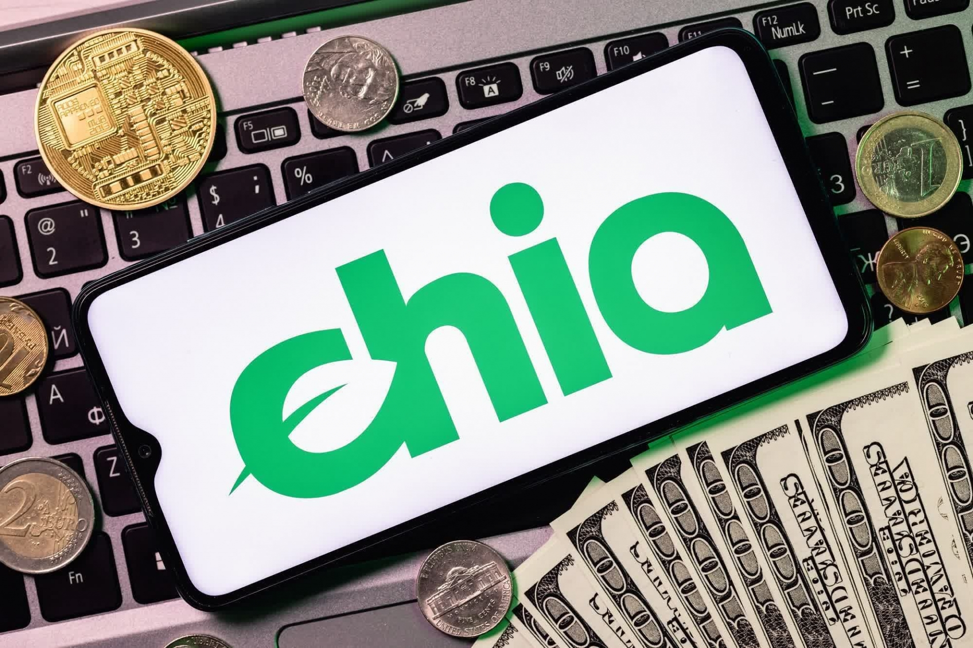 Spending 3 billion to dig 'Green Bitcoin', the owner of Chia mining mine earned 56 million dong after 2 months of March