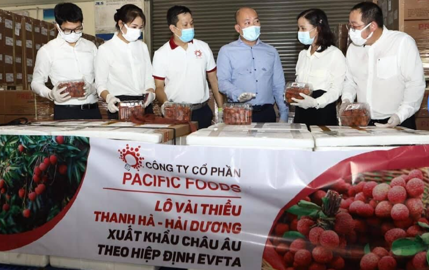 First batch of lychee exported to EU under Free Trade Agreement 1