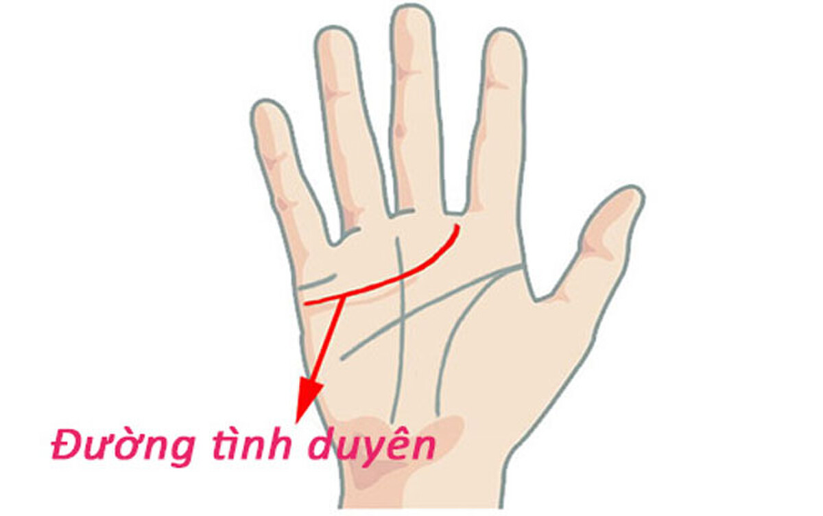 The palm line indicates that the owner has a bad love relationship 1