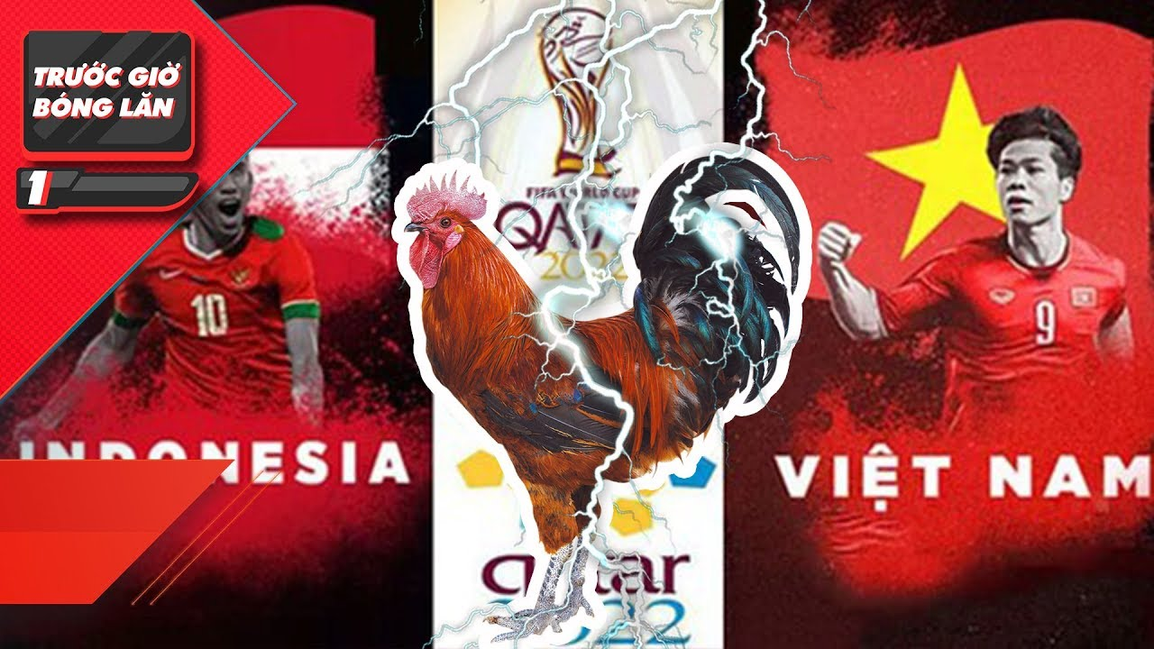 Vietnam vs Malaysia Tel: 'Prophet Chicken' shows off his talent in predicting match results 1