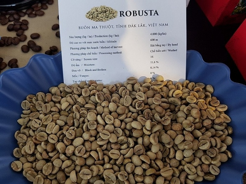 Coffee price today 7/10: The market increased slightly after many days of plunging 2
