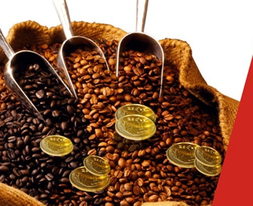 Coffee price today 6/10: The market continues to plunge in all