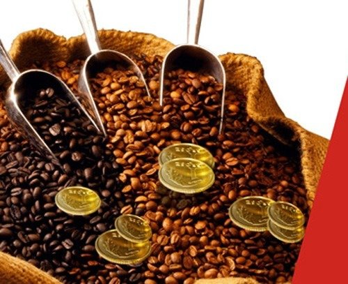 Coffee price today September 29: The domestic market and the world market both went up 2