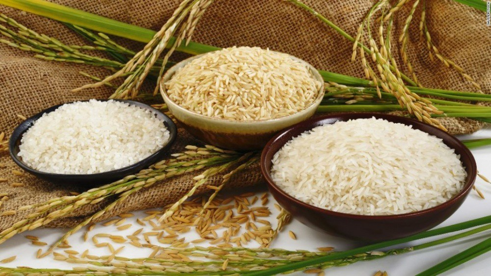Rice prices today 24/9: Slight fluctuations 1