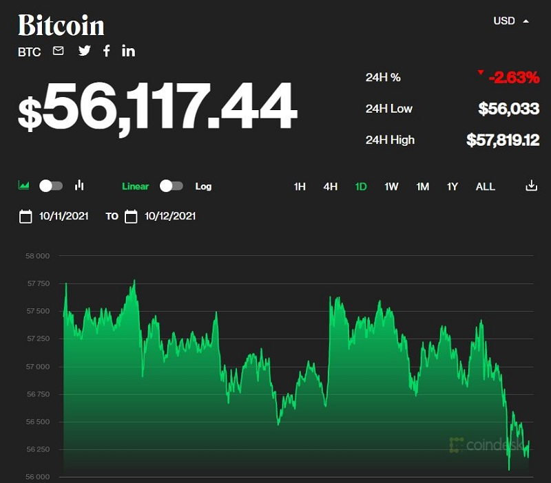Bitcoin price today October 13: Slight decline but still at a high of 56,000 USD 1