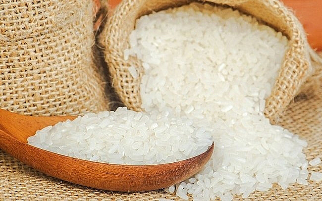 Rice price today 11/10: Going sideways at the first session of week 1
