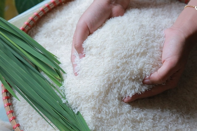 Rice prices today 1/10: Rice prices suddenly dropped at the beginning of January