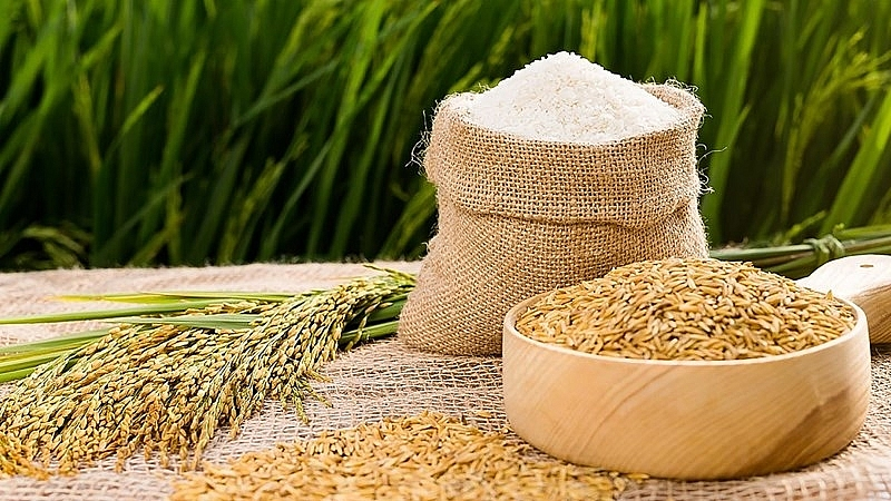 Rice prices today 5/10: Stable after a volatile session 1